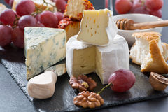 Molded cheeses and snacks on the blackboard Stock Image