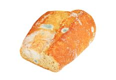 Molded loaf of bread. Isolated on white background Stock Photo