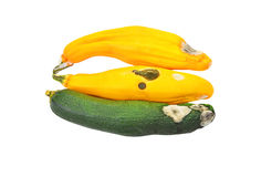 Molded vegetable marrow (zucchini). Isolated on white background Stock Photography
