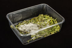 Molded vegetables in the plastic container Royalty Free Stock Image