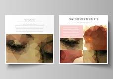 Moldes do negócio para o folheto quadrado do projeto, compartimento, inseto, brochura Tampa do folheto, disposição abstrata do ve ilustração royalty free