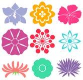 Moldes florais ilustração do vetor