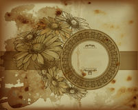 Moldes florais da camomila antiga ilustração do vetor