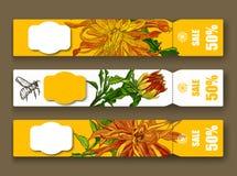 Moldes tirados mão do flayer da flor Foto de Stock Royalty Free