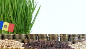 Moldova flag waving with stack of money coins and piles of wheat. And rice seeds stock footage