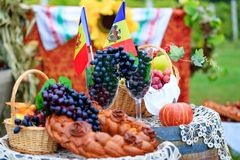 Moldova Independence Day celebrated on August 27. Elements of th. E Moldovan national identity: tricolor flag, grape vines, grapevine, wine barrel and baked stock image