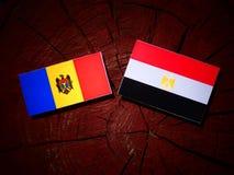 Moldovan flaga z egipcjanin flaga na drzewnym fiszorku Zdjęcie Stock