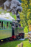 MOLDOVITA,罗马尼亚- 9月09 :2015年9月09日的窄片铁路Hutulca火车在Moldovita,罗马尼亚 免版税库存图片