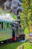 MOLDOVITA RUMUNIA, WRZESIEŃ, - 09: Wąskiego wymiernika linii kolejowej Hutulca pociąg na Wrześniu 09, 2015 w Moldovita, Rumunia Obraz Royalty Free