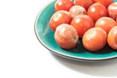 Moldy томаты на крупном плане плиты Стоковая Фотография RF