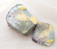 Moldy φραντζόλα του ψωμιού Στοκ φωτογραφία με δικαίωμα ελεύθερης χρήσης