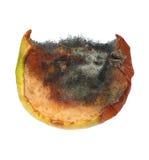 Moldy apple isolated on white Stock Photos