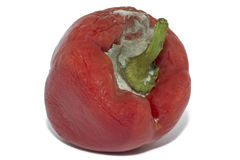 Close Up Of Moldy Bell Pepper On White Stock Photo