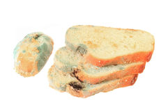 Moldy bread. Pieces of moldy bread on a white background Royalty Free Stock Photo