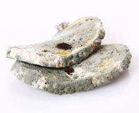 Moldy bread Royalty Free Stock Images