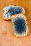 Moldy bread. Moldy bread on cutting board Royalty Free Stock Image