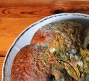 Moldy bread Stock Image