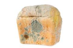 Moldy bread. Isolated Royalty Free Stock Photos
