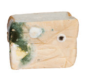 Moldy bread Isolated Stock Photography