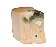 Moldy bread Isolated Stock Images