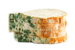 Moldy bread Stock Images