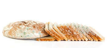 Moldy bread isolated on white background danger Royalty Free Stock Photos