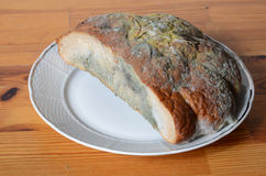 Moldy bread. On the plate Stock Image