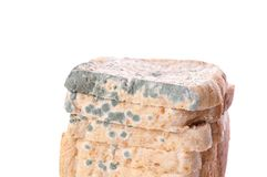 Moldy bread. Moldy toast bread isolated on white Royalty Free Stock Images
