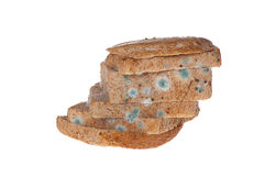 Moldy bread. Moldy bread on white background Stock Images