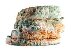 Moldy bread whole grain Stock Photos