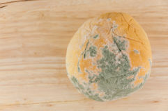 Moldy bread on wood background Royalty Free Stock Image