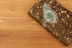 Moldy bread in wooden table. Unhealthy food. Spoiled food.  Royalty Free Stock Image