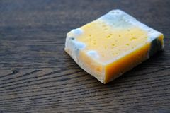 Moldy cheese on wood, spoiled product Stock Images