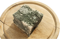 Moldy lump of cheese Royalty Free Stock Images