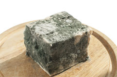 Moldy lump of cheese Royalty Free Stock Image