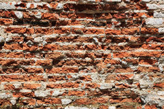 Moldy red brick wall background texture. grunge brick wall Stock Images
