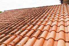 Moldy roof tiles in humid tropical climate. In Malaysia Stock Image