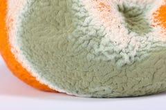 Moldy Rotten Orange Stock Photo