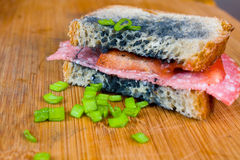 Moldy sandwich with salami, tomatoes on a chopping board Royalty Free Stock Photography