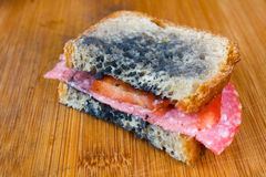 Moldy sandwich with salami, tomatoes on a chopping board Stock Images