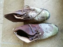 Moldy shoes from the men Royalty Free Stock Images