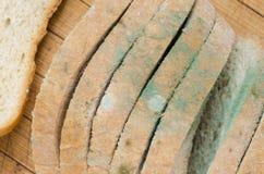 Moldy sliced bread Stock Photos