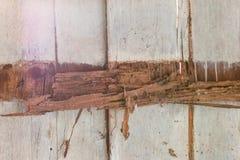 Moldy walls, wood beams. Stock Photography