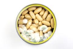 Moldy white beans Royalty Free Stock Photo