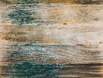 Background moldy wood natural background Royalty Free Stock Photo
