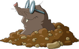 Mole. A mole wearing glasses and a hole, vector Royalty Free Stock Images