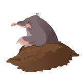 Mole. Vector image of smiling cartoon grey mole Stock Images