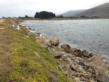 The Mole, Aramoana. Long stretch of breakwater in Aramoana old harbour Stock Photo