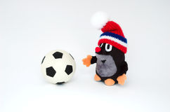Mole with ball royalty free stock images