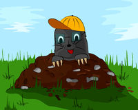 Mole with a cap on molehill Royalty Free Stock Photos